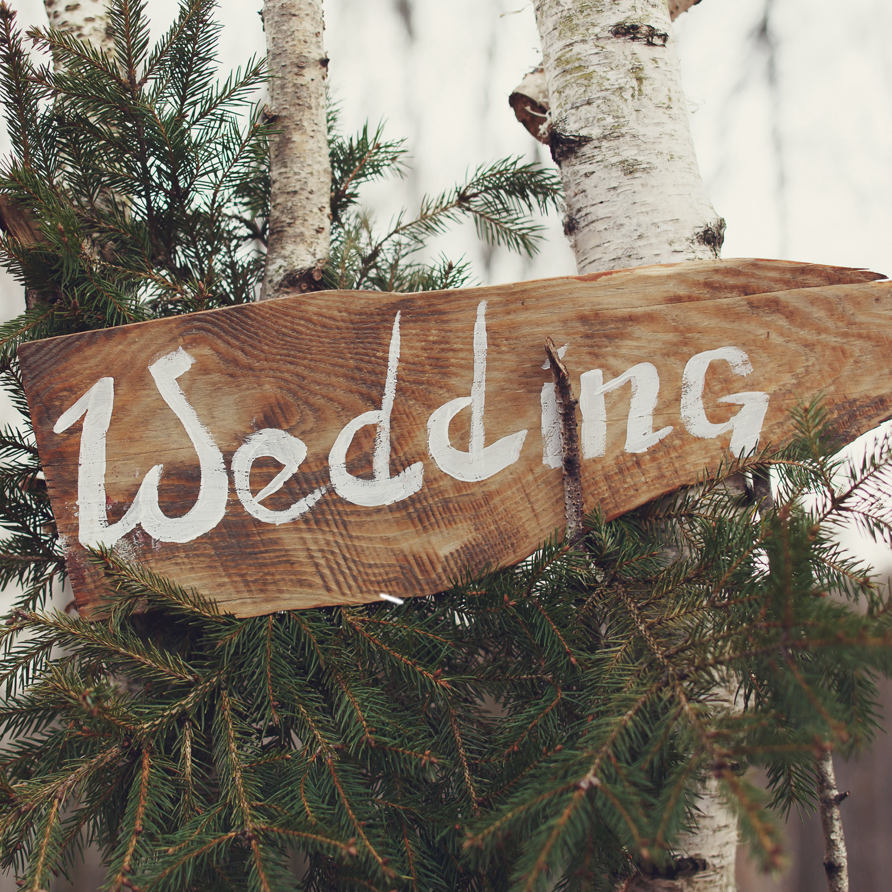 Les Faveurs de Mariage